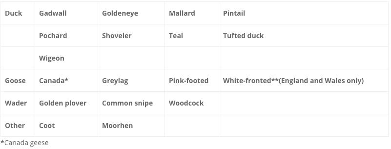 duck shooting season UK